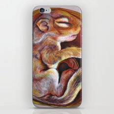 Sciuradae iPhone & iPod Skin