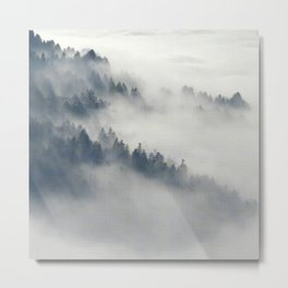 Fog in the forest Metal Print