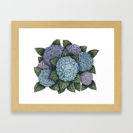My Hydrangeas Framed Art Print