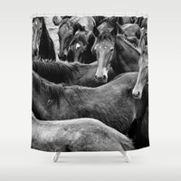 horses Shower Curtains featuring HORSES by Francesca Todde