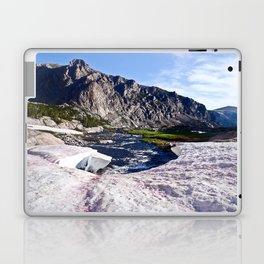 Glacier Walk Laptop & iPad Skin