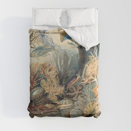 Ocean Life by James M Sommerville 1859 - Reproduction from original under CC0 Comforters