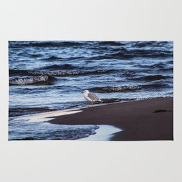 Seagulll by the Waves Rug