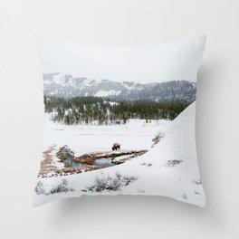Soda Butte Throw Pillow