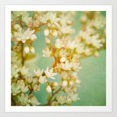 dainty florets Art Print
