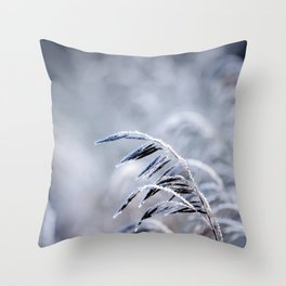 Frosty Morning 5 Throw Pillow