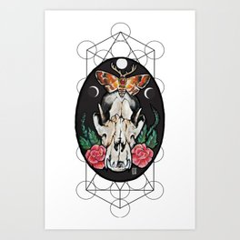 Death from above. Art Print