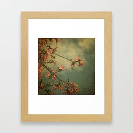 Spring is in the air... Framed Art Print