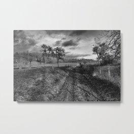 to the vineyards Metal Print