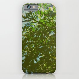 Green Leaves 2 iPhone Case