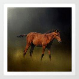 Copper Colt In The Moonlight Art Print