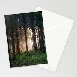 Winter Sunbeams Stationery Cards
