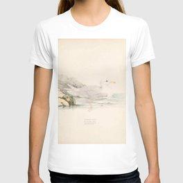 Iceland Gull, larus islandicus5 T-shirt