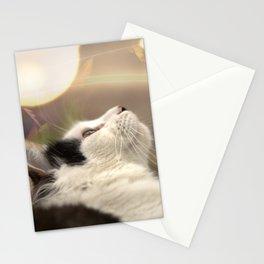 The Oreo Cat: Fall Stationery Cards