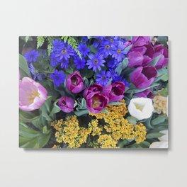 Floral Spectacular: Blue, Plum and Gold - Olbrich Botanical Gardens Spring Flower Show, Madison, WI Metal Print
