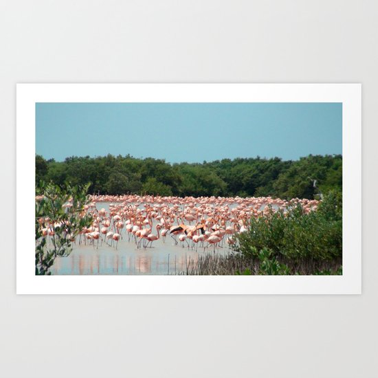 Flamingo Landing Art Print