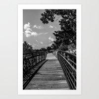 veterans lake bridge Art Print