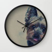 yorkie Wall Clocks featuring yorkie by michaelchon