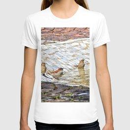 birds bath in the sun T-shirt