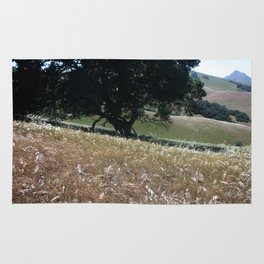 California Live Oak Rug