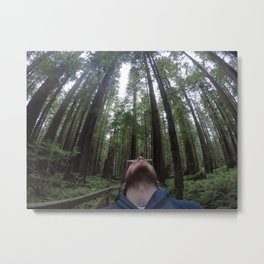 The head on the forest - Redwood national park Metal Print