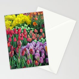 Colorful bunches of spring tulips Stationery Cards