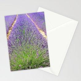 Lavender Field Flowers Landscape Stationery Cards