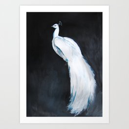 White Peacock II Art Print