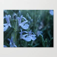 Flowers #19 Canvas Print