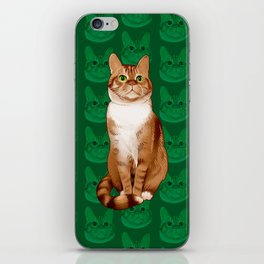 Roswell the Cat iPhone Skin
