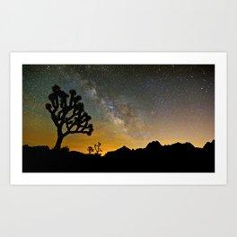 Joshua Tree, Milky Way   7/16/14 Art Print