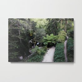 Cool Of The Day Metal Print