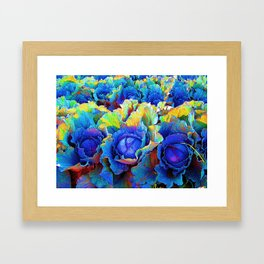 Yuma Cabbages Framed Art Print