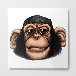 Cheeky baby chimp in colour. Metal Print