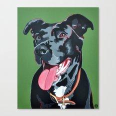 Boomer Canvas Print