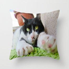 Khoshek sweet cat Throw Pillow