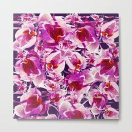 Orchid Chaos Metal Print