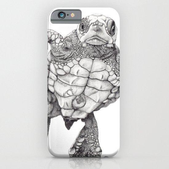 Chelonioidea (the turtle) iPhone & iPod Case