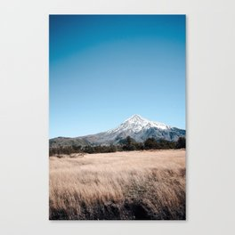 vulcano lanin Canvas Print