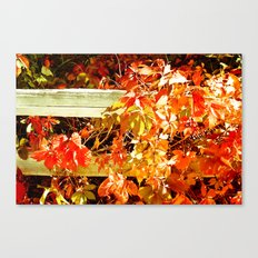 On The Fence About Fall Canvas Print
