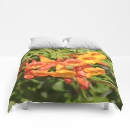 Natural Brass Blowing in the Breeze Comforters