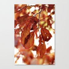 Autumn Red Canvas Print