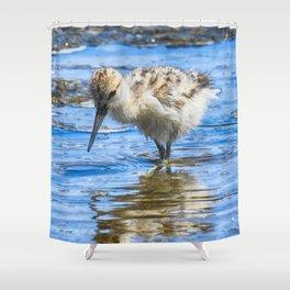 Black Necked Stilt Chick Shower Curtain