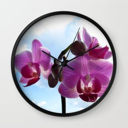 Pink Orchids Wall Clock