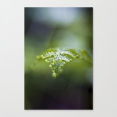 Raining Green Canvas Print