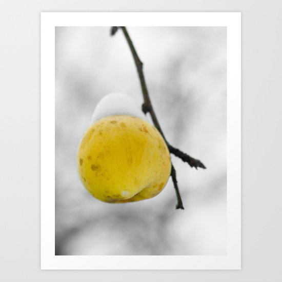 Winter apple Art Print