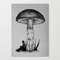 Under the Toadstool Canvas Print