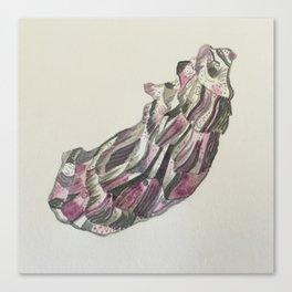 Purple Oyster Canvas Print