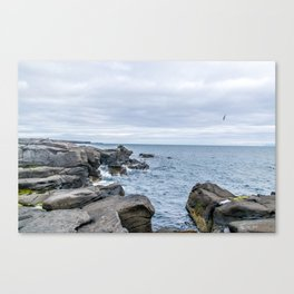 Icelandic Shore Canvas Print