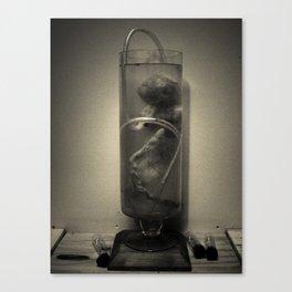 Test Tube Fetus Canvas Print